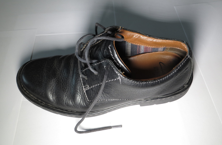 lined leather shoe